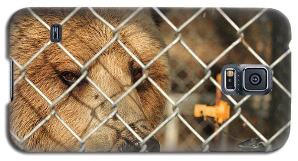 Caged Bear Galaxy S5 Case