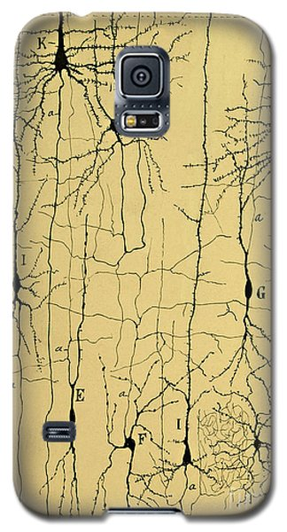 Cajal Drawing Of Microscopic Structure Of The Brain 1904 Galaxy S5 Case
