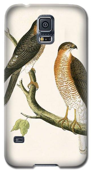 Calcutta Sparrow Hawk Galaxy S5 Case by English School