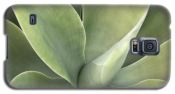 Cali Agave Galaxy S5 Case