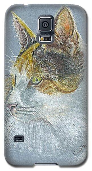 Galaxy S5 Case featuring the drawing Calico Callie by Carol Wisniewski