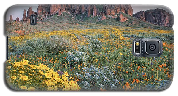 California Brittlebush Lost Dutchman Galaxy S5 Case