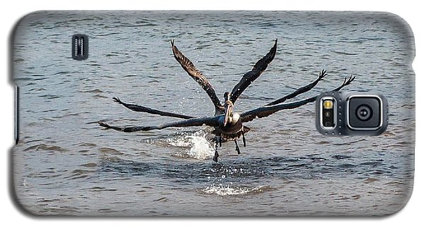 California Brown Pelicans Flying In Tandem Galaxy S5 Case