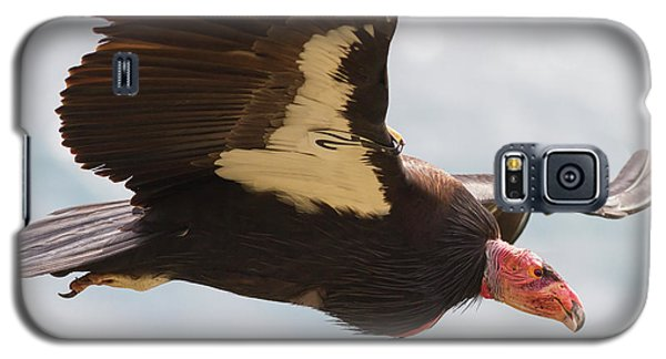 California Condor At Big Sur Galaxy S5 Case