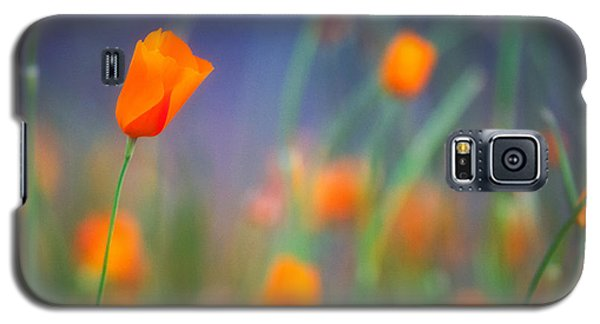 California Poppies 2 Galaxy S5 Case