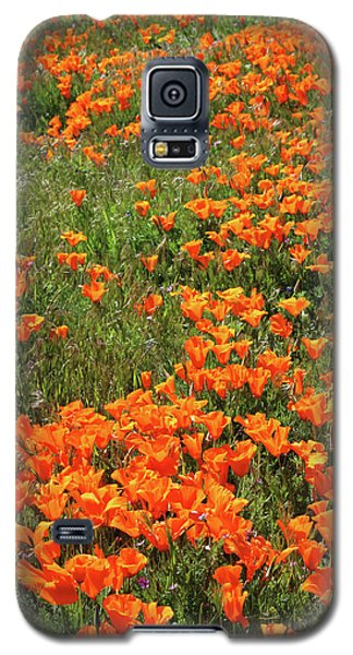 Galaxy S5 Case featuring the mixed media California Poppies- Art By Linda Woods by Linda Woods