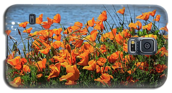 California Poppies By Richardson Bay Galaxy S5 Case