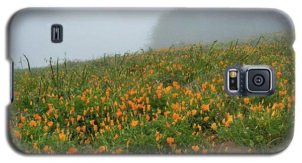 California Poppies On Volcan Mountain Galaxy S5 Case