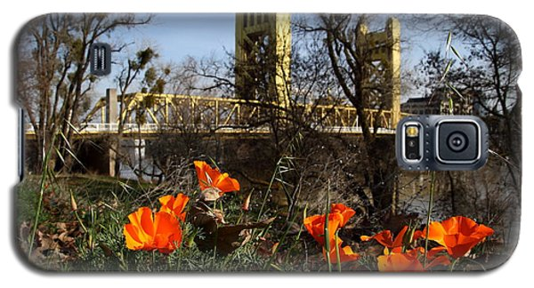 California Poppies With The Slightly Photographically Blurred Sacramento Tower Bridge In The Back Galaxy S5 Case