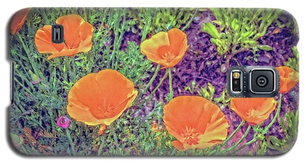 California Poppys Too Galaxy S5 Case by William Havle