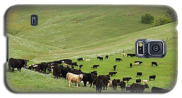 California Ranching Galaxy S5 Case