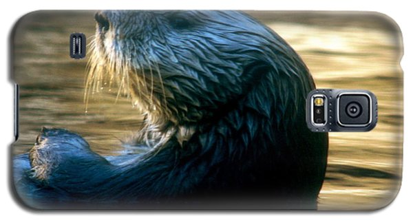 California Sea Otter Galaxy S5 Case