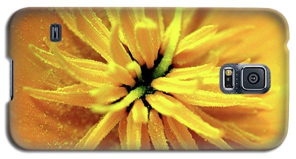 Californian Poppy Macro Galaxy S5 Case by Baggieoldboy
