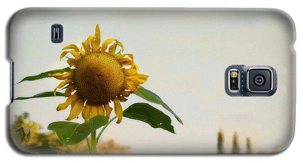 Californian Tuscany Galaxy S5 Case