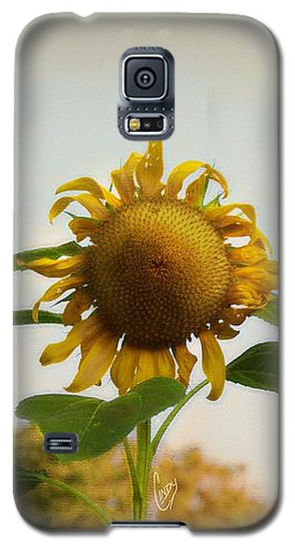 Californian Tuscany Galaxy S5 Case