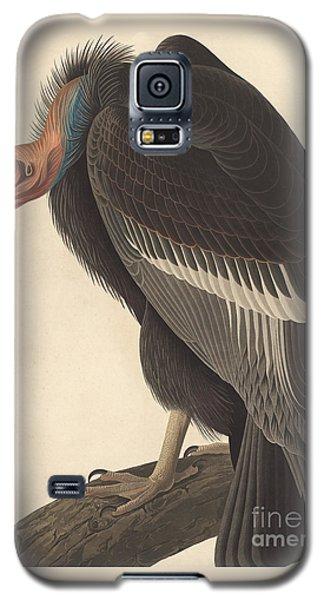 Californian Vulture Galaxy S5 Case by John James Audubon