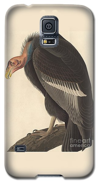 Californian Vulture Galaxy S5 Case