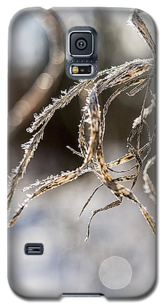Galaxy S5 Case featuring the photograph Calligraphy In The Grass by Annette Berglund