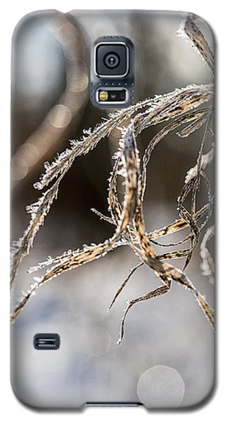 Calligraphy In The Grass Galaxy S5 Case by Annette Berglund