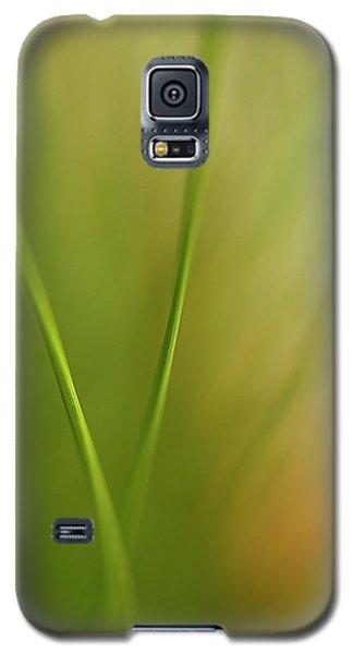 Calm Galaxy S5 Case