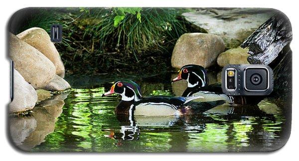Calm Waters - Wood Ducks Galaxy S5 Case