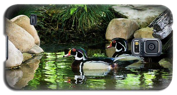 Calm Waters - Wood Ducks Galaxy S5 Case