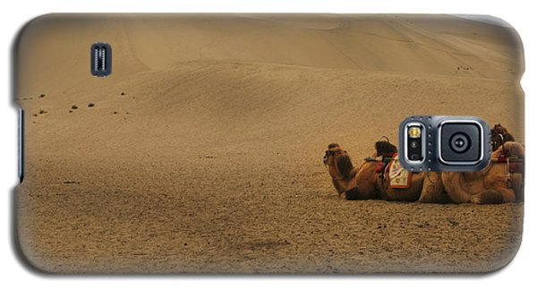 Camels Of The Silk Route Galaxy S5 Case