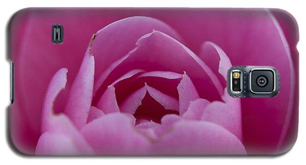 Camellia Close-up Galaxy S5 Case