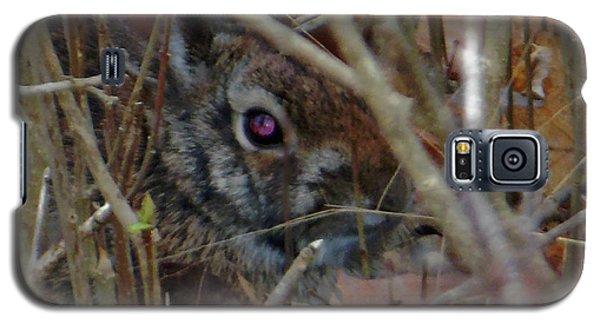 Galaxy S5 Case featuring the photograph Camo Bunny by Rockin Docks Deluxephotos