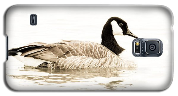 Canada Beauty Galaxy S5 Case