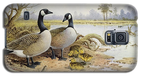 Canada Geese Galaxy S5 Case by Carl Donner
