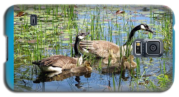 Canada Geese Family On Lily Pond Galaxy S5 Case