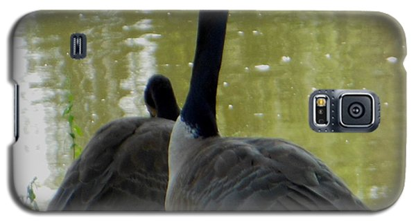 Galaxy S5 Case featuring the photograph Canada Goose Edge Of Pond by Rockin Docks Deluxephotos