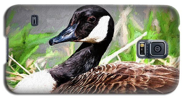 Geese Galaxy S5 Case - Canadian Goose by Tom Mc Nemar
