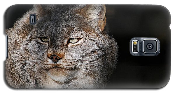 Galaxy S5 Case featuring the photograph Canadian Lynx  20130107_57 by Tina Hopkins