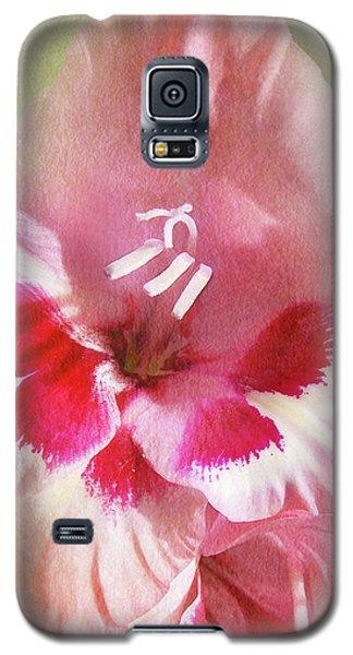 Candy Cane Gladiola Galaxy S5 Case