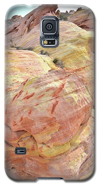 Galaxy S5 Case featuring the photograph Candy Colored Sandstone In Valley Of Fire by Ray Mathis