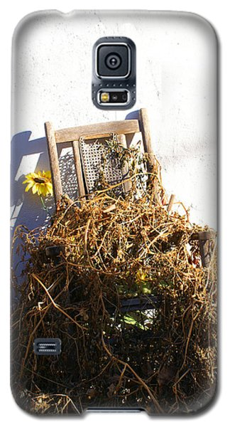 Cane Back Chair And Sunflower Galaxy S5 Case