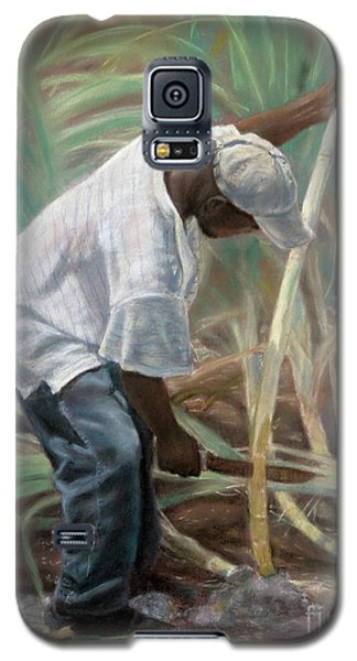 Cane Field Galaxy S5 Case