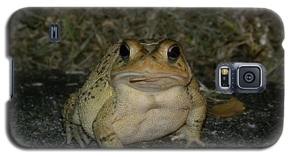 Cane Toad Galaxy S5 Case by Terri Mills
