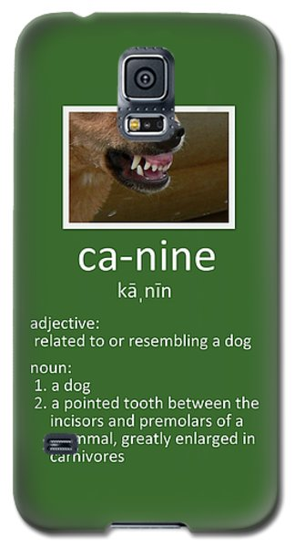 Canine Poster Galaxy S5 Case