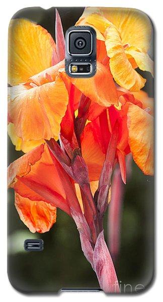 Canna Galaxy S5 Case