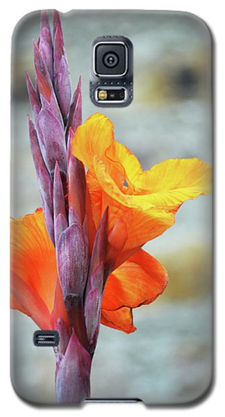 Galaxy S5 Case featuring the photograph Cannas by Terence Davis