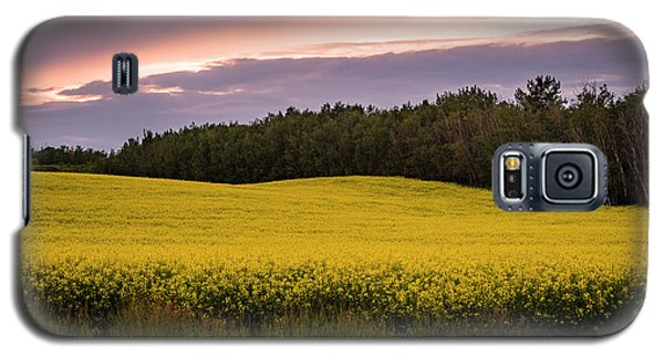 Galaxy S5 Case featuring the photograph Canola Crop Sunset by Darcy Michaelchuk