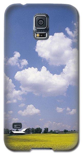 Canola Field Galaxy S5 Case