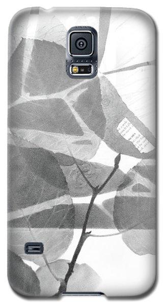 Canopy No.1 Galaxy S5 Case