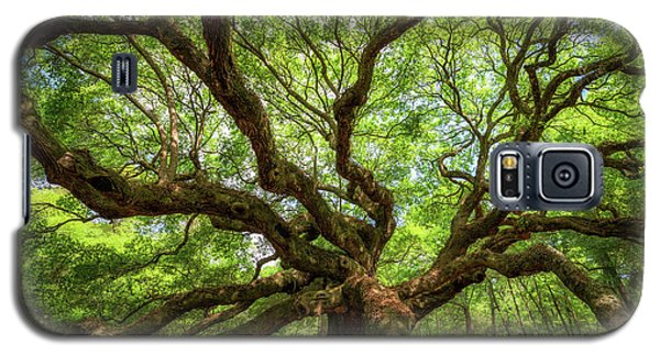 Canopy Of Color At Angel Oak Tree  Galaxy S5 Case