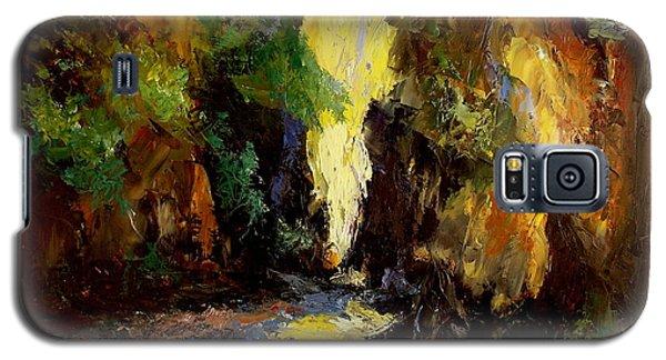 Canyon Creek Galaxy S5 Case by Gail Kirtz