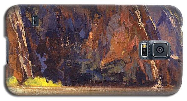 Grand Canyon Galaxy S5 Case - Canyon Walls by Cody DeLong