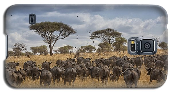 Galaxy S5 Case featuring the tapestry - textile Cape Buffalo Herd by Kathy Adams Clark